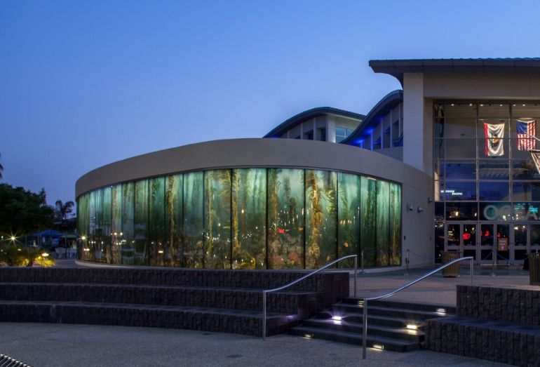 Aquarium Wins Two International Retail Design Awards