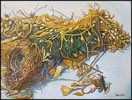 Aquarium to Host Beach-Themed Kelp Art Exhibit