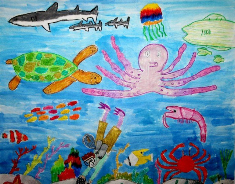 Aquarium Will Collect Submissions for Coastal America Art Contest
