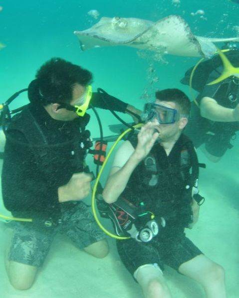 Aquarium Dive Safety Officer Helps with Groundbreaking SCUBA Study