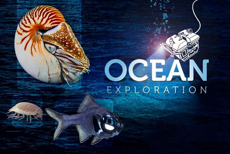 Ocean Exploration Programs and Exhibits Now Open