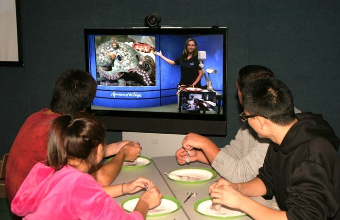 Aquarium Expands Reach with Videoconferencing Technology