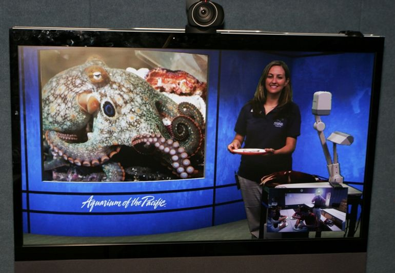 Aquarium of the Pacific Brings the Sea to Life for Miller Children's Hospital Patients