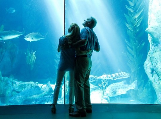 Couple in front of Blue Cavern - slideshow
