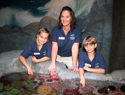 Families at the Aquarium