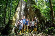 six people standing at the base of a large tree in the rainforest