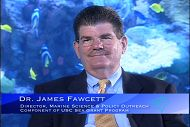 James Fawcett