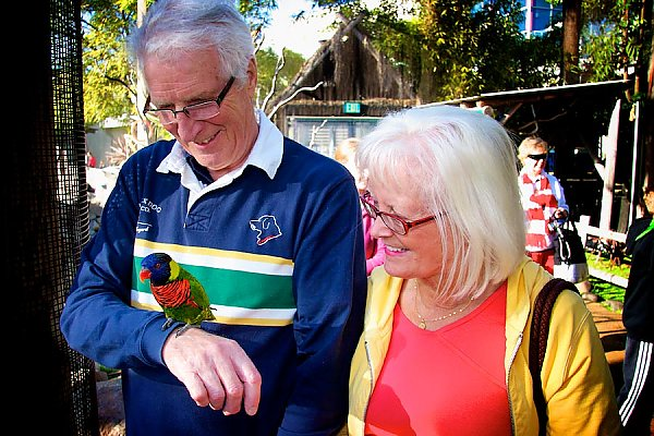Senior couple with lorikeet