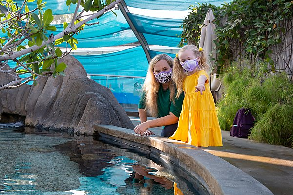 Masked mother and daughter in Shark Lagoon