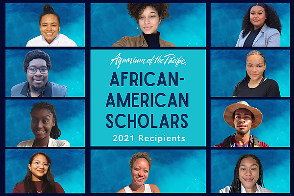 African American Scholars 2021 Recipient collage