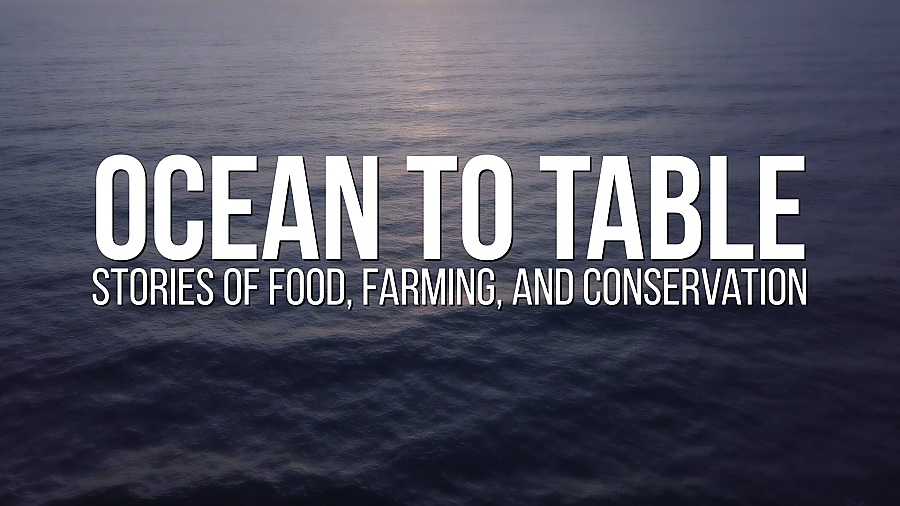Still of Ocean to Table intro (graphic overlay w/blue ocean background).