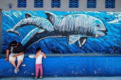 Vaquita mural with people in front - thumbnail