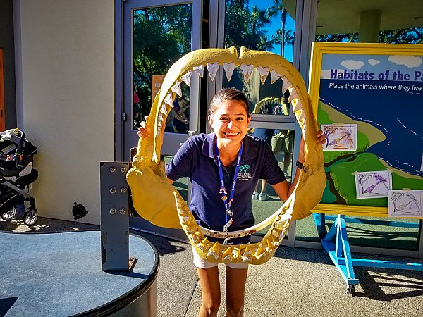 Smiling volunteer poses with a large shark jaw