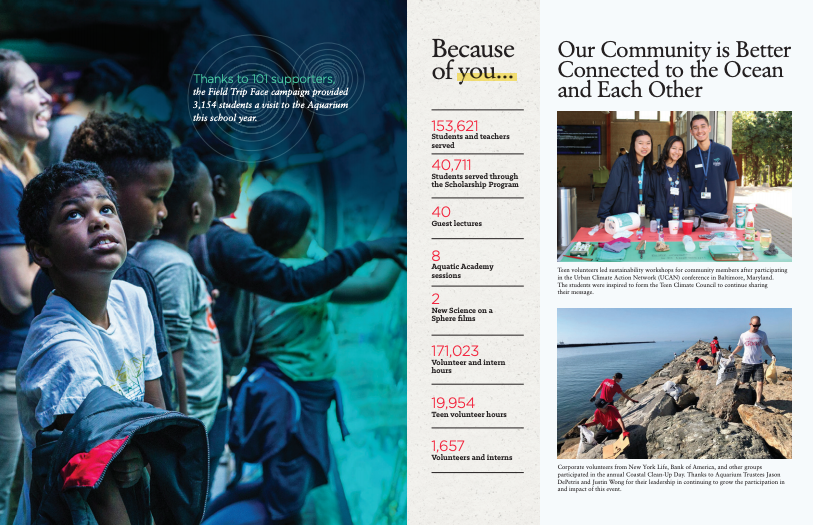 2019 Impact Report page-spread