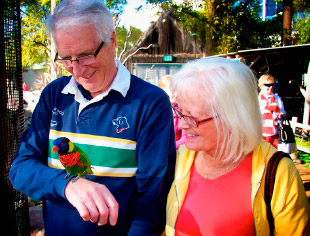 Older couple looking at lorikeets