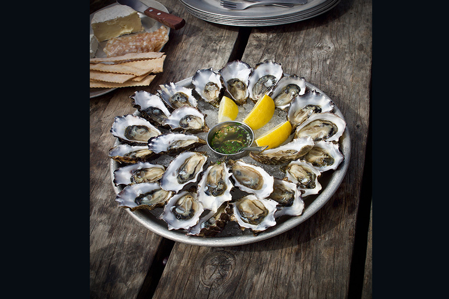 Oysters plated in a circle on a tray with lemons and mignonette sauce. 900x600 gallery