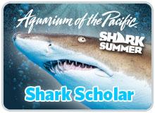 Shark Student