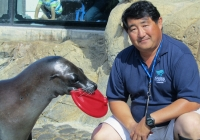 FUN WITH SEA LIONS