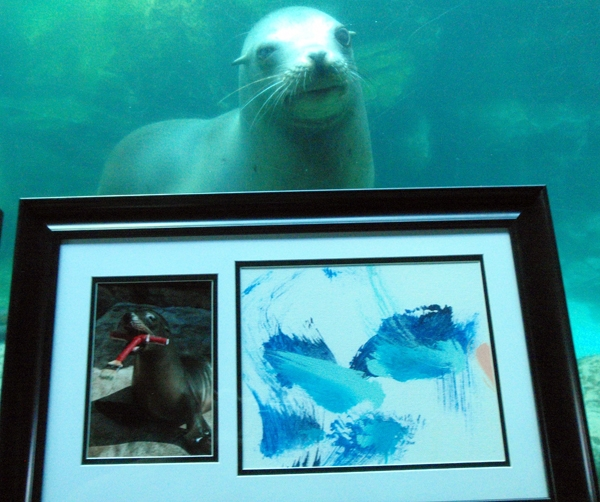Sneak Peak at Sea Lion Art