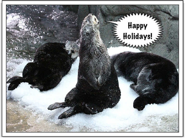 Happy Holidays From The Otters