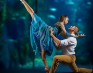 "Long Beach Ballet presents ""Guardians"""