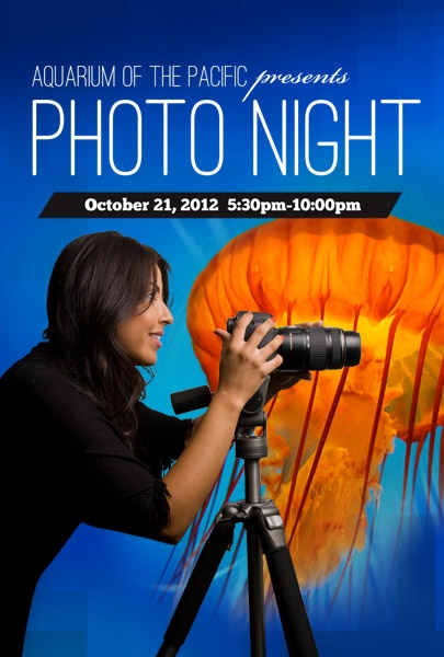 Photographers Night