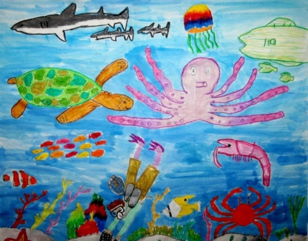 Student Art from Aquarium's Regional Contest Sweeps National Competition