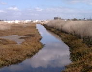 Los Cerritos Wetlands Authority Acquires 100 Acres of Wetlands Property for Restoration Purposes