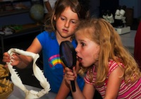 kids investigating a shark jaw