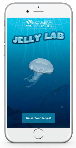 Aquarium Jelly Lab Splash Screen