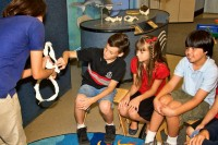 kids learning about a shark jaw with a teacher