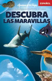 Guia para el Visitante en Español