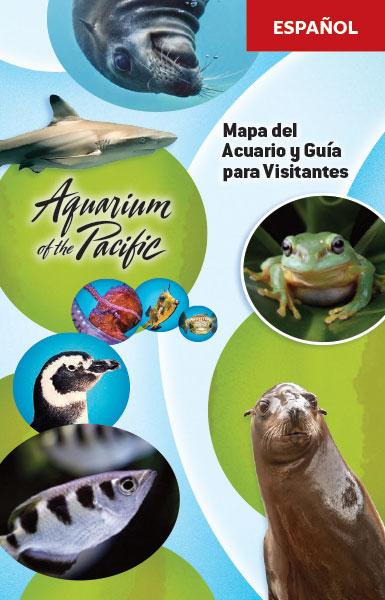 Mapa y Guía para Visitantes