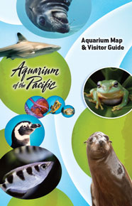 Aquarium Visitor Guide