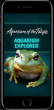 Aquarium Mobile App